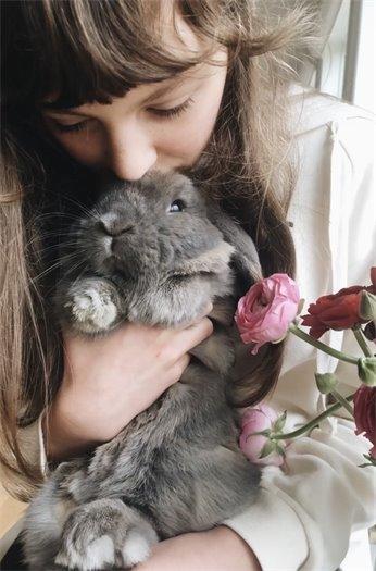 Pets - Sofia Kaleho - Bunny Love