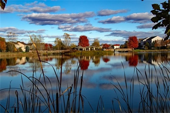 People & Families Winner - Tom Stuart - Lakeside Park Reflection
