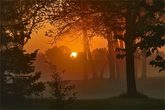 Community Activities & Landmarks - Tom Stuart - TPC Sunrise