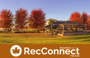 RecConnect Online Fall 2020