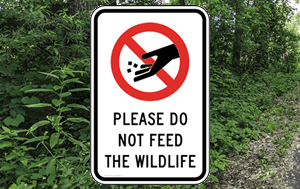 Please Do Not Feed the Wildlife