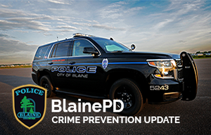Crime Prevention Weekly Update