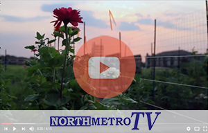 communitygardens-news-300
