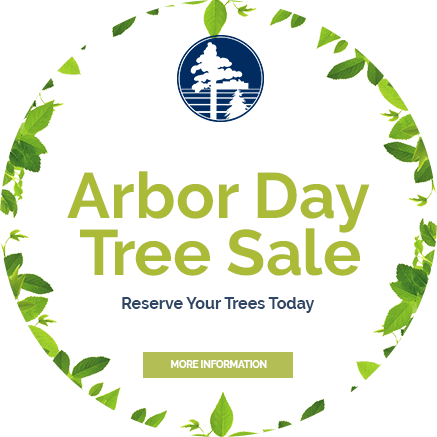 Arbor Day Tree Sale - Reserve Your Trees Today - More Information