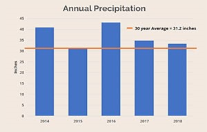 Annual Precipitation Chart - 300