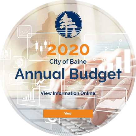 2020 City of Blaine Annual Budget - View Online