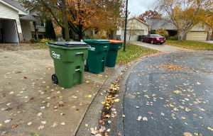 Garbage and Recycling Carts at the End of Driveway - 300
